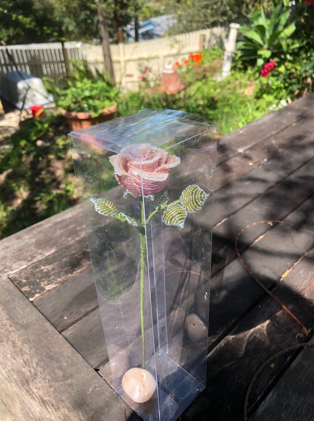 Rose_October 23